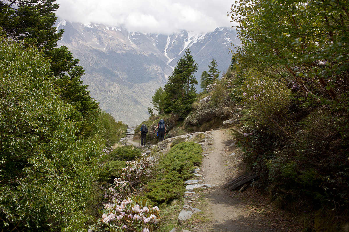 Trekking in the mountains of Uttarkhand in the Indian Himalaya